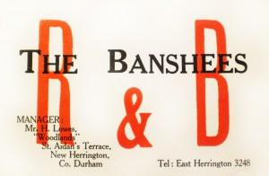 2 Banshees card